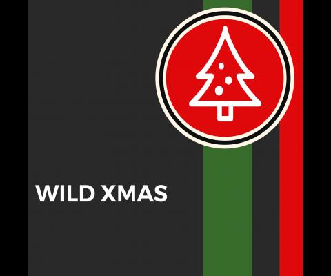 La compilation de Noel de DGN