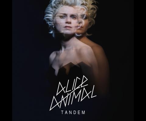 Alice Animal : Rencontre pour « Tandem » un album de rock et chansons