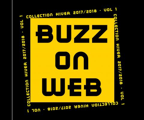 Compilation BuzzonWeb : un hiver 2017 - 2018