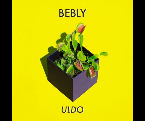 Bebly : rencontre avec un trio rock