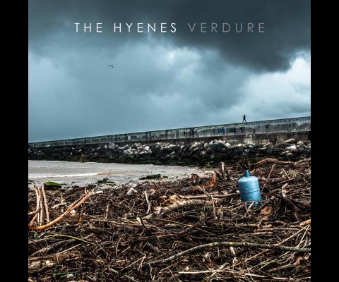 Rencontre avec the Hyènes pour Verdure