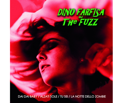 Dino Farfisa and The Fuzz : Rencontre pour un premier 45 t