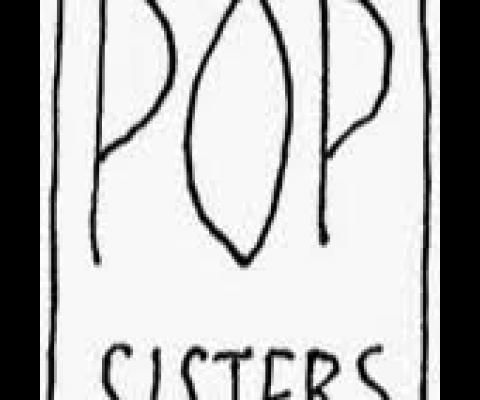 RENCONTRE AVEC LE LABEL POP SISTERS RECORDS